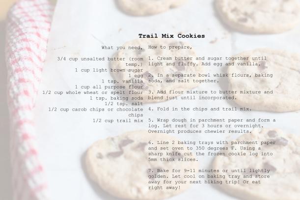 trailmixcookierecipe